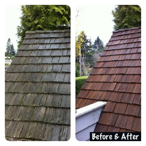 Portland Or Pressure Washing Services