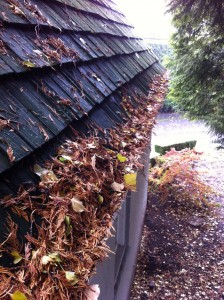 Portland Gutter Cleaning Services