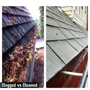 Portland roof and gutter cleaning