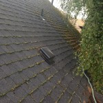 Portland Oregon Roof Moss Removal